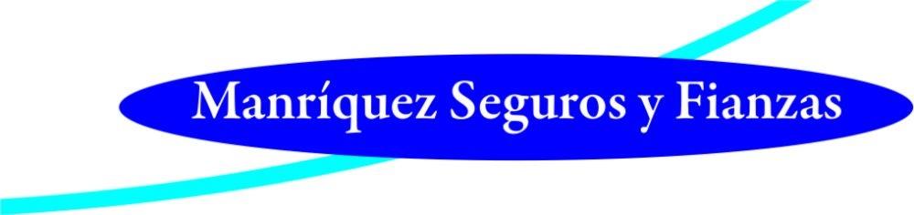 Manriquez seguros y fianzas.com: